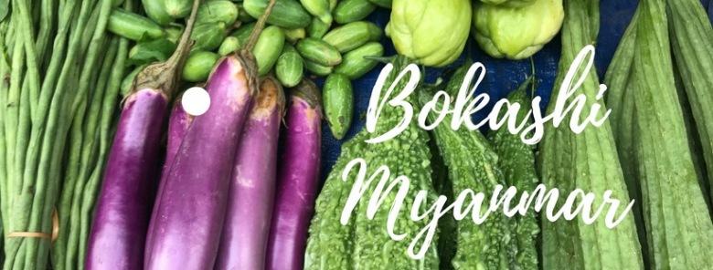 Bokashi Myanmar-2